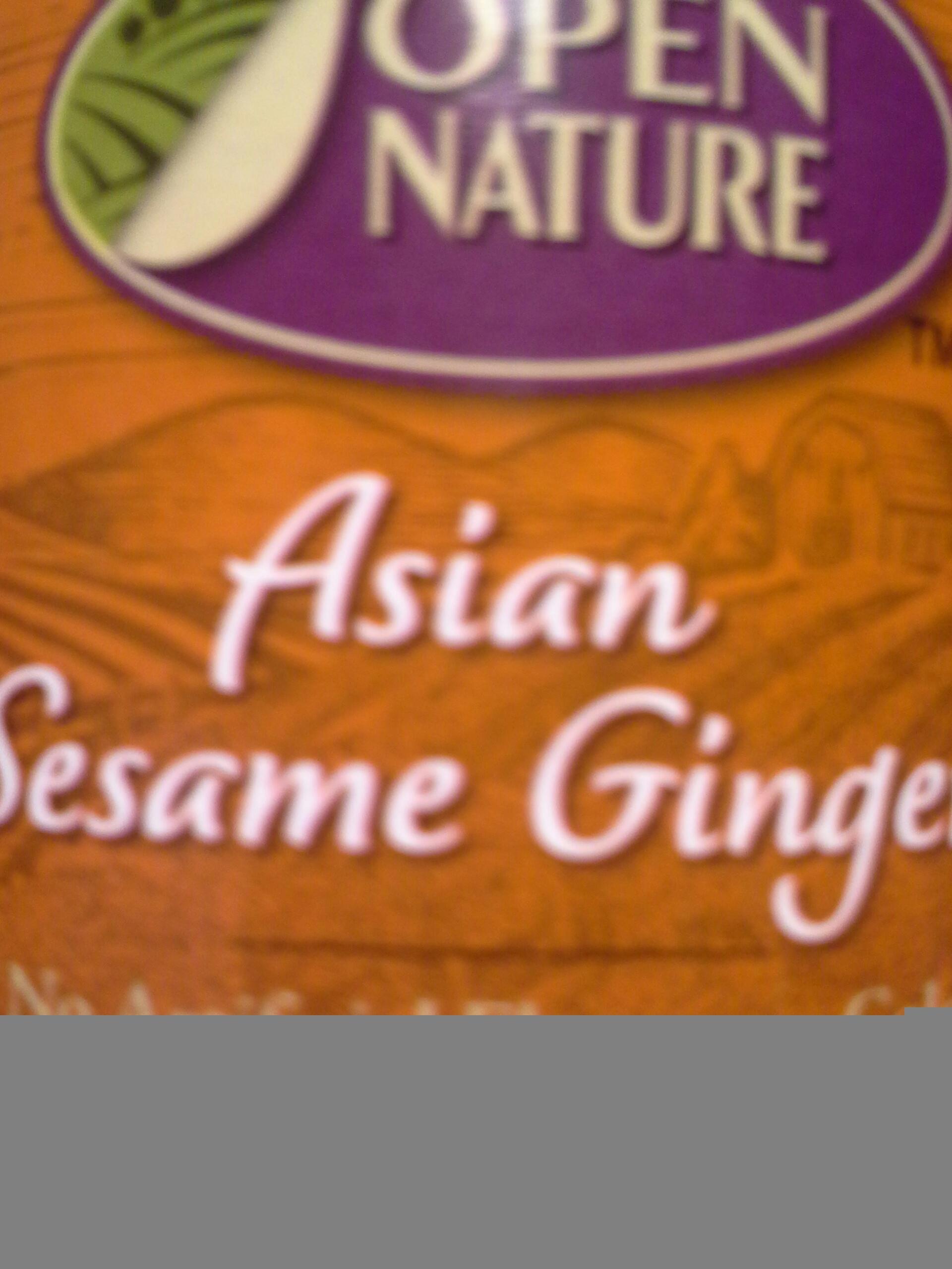 Asian Salad Dressing Ginger